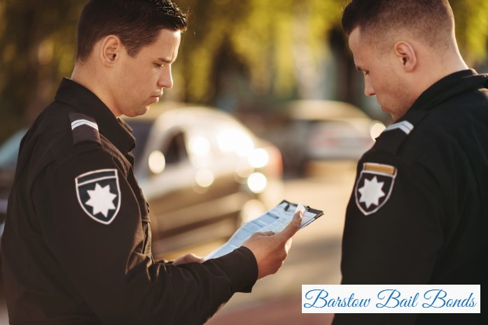 What Happens if You Give a Police Officer False Information?